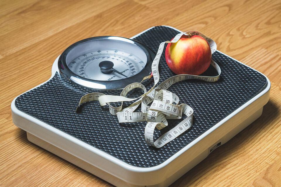 artikel kesehatan obesitas